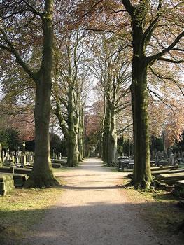 Begraafplaats_Daalseweg_Nijmegen